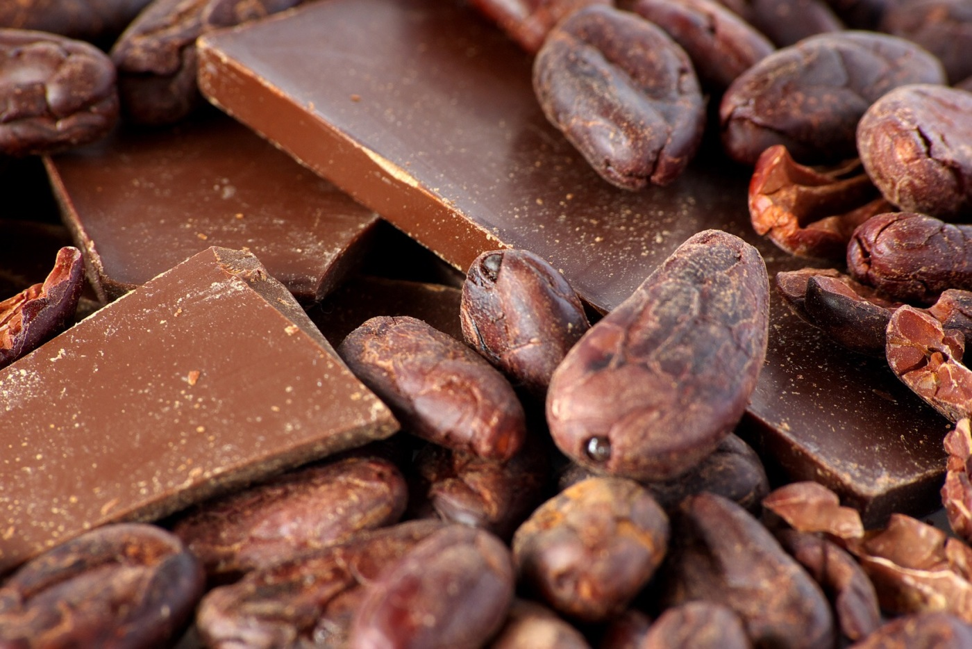 Kakobohnen und Schokolade